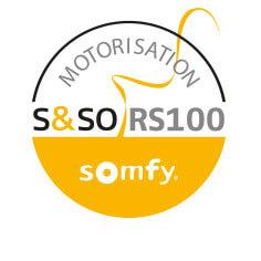 Motorisation radio Somfy IO RS100